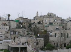 Nice Palestine photos - Find the latest news about Israel, the Syria civil war and the Middle East at http://www.israelnewsreport.net/palestine_pics/nice-palestine-photos-52/.