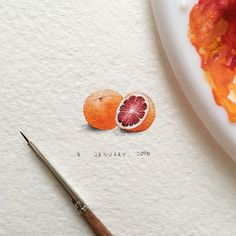 """Day 4/120 (1/30 #tiny_yummydays series) Grapefruit Size 20 x 11 mm. Vitamin """"Sea"""" for you, guys! Waiting for the summer!! #grapefruit #yummy #fruit #orange #vitamin #blvart #artfido #art #tinyart #drawings #miniature #watercolor #global_artworks #arts_help #arts_gallery #waterblog #painting #artmaster #supportartists #art_worldly #sharingart #miniart #miniatures #miniatureart #tiny_worlds_living #artsfeatures #artscrowds #artistic_unity_ #top_watercolor"""
