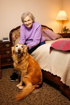 The CareGiver Partnership: Aging in Place: 3 Important Considerations to Make a Bedroom Safer for Seniors Accelerated Nursing Programs, Aging Parents, Aging In Place, Home Health Care, Elderly Care, Living At Home, Dog Boarding, In A Heartbeat, Rescue Dogs