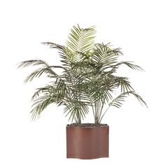 Vickerman Deluxe Dwarf Palm Tree