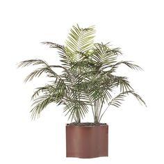 Vickerman Deluxe Dwarf Palm Tree