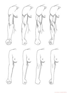 Ideas art reference anatomy woman figure drawing for 2019 Arm Drawing, Human Anatomy Drawing, Male Figure Drawing, Body Reference Drawing, Female Drawing, Body Drawing, Anatomy Art, Art Reference Poses, Arm Anatomy