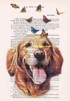 Golden Retriever with butterflies My original artwork is printed with Epson DuraBrite Ultra Ink gives high performance print quality and longevity
