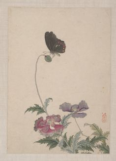 Birds, Insects and Flowers' (19th century) from an album. Ink and colour on paper by Yi Zhai.