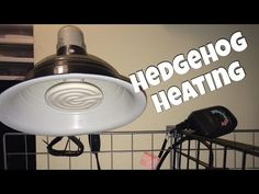 **READ ME** :) Hi everyone! This video is all about heating and why it is so important to your hedgehogs life. Here is a link to a hedgehog care sheet that i...