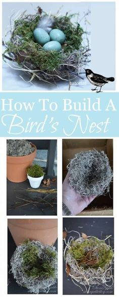 Bird's Nest Craft || Grab a glue gun, some twigs or moss, and faux robin eggs for this gorgeous and quick spring decoration! www.arrowfastener.com