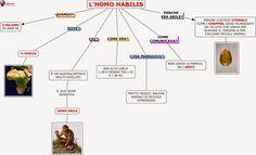 HOMO+HABILIS+(STORIA).jpg 1.600×970 pixel