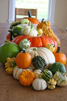 The Farm Chicks.pumpkins and gourds Harvest Time, Fall Harvest, Autumn Decorating, Happy Fall Y'all, Fall Pumpkins, Autumn Inspiration, Fall Season, Gourds, Fall Halloween