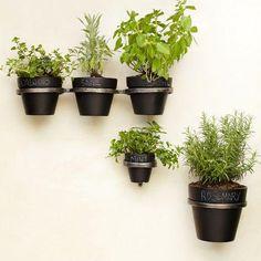 Decor/Accessories - Plant Holder Brackets | west elm - plant holder brackets, wall mount plant pot brackets, wall mounted plant pot holders,...