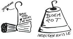 Eén - Dieren in nesten - Bouw mee voor het lieveheersbeestje | Eén