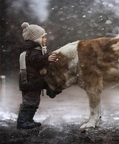 Russian mom, Elena Shumilova, captures family, farm life in beautiful photos. This is her son, Vanya, with one of the family's dogs. What else can I say, but amazing photography, beautiful child with a beautiful dog...