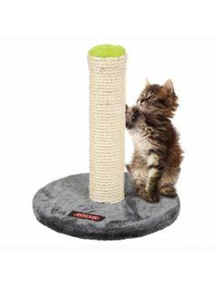 Drapak na pluszowej podstawie może służyć także jako miejsce do wypoczynku. Słupek pokryty jest mocnym i wytrzymałym na ostre pazurki sizalem. Zabawkę na sznurku łatwo można wprawić w ruch dzięki czemu kot może sam świetnie się bawić.