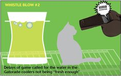 If cats and dogs refereed the Super Bowl: The water would taste better if it were straight from a running tap —#veterinary dvm360
