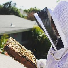 10 Mistakes New Beekeepers Make