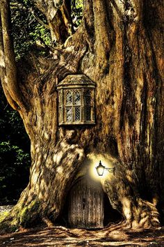 Think this looks very much like the Keebler Elf tree (upper floor where the 'Magic Oven's' are located.)  Looks like they've 'tucked it in for the night--window shuttered, porch light on.