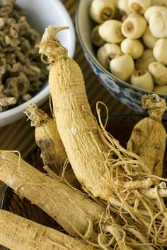 Remarkable Ginseng Research Backs Herb's Reputation  - MOTHER EARTH NEWS