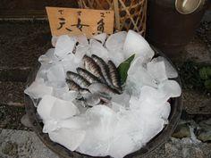 Red-spotted masu trouts (天女魚; Amago) in Nara.