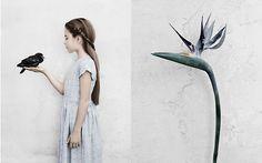 helen james design: Vee Speers for Bloom