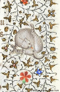 Cat licking itself | Book of Hours | France, Paris | ca. 1420-1425 | The Morgan Library & Musuem
