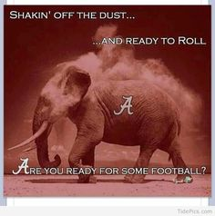 Funny Crimson Tide | Bama is Ready to ROLL! | Alabama Crimson Tide Pictures | TidePics.com