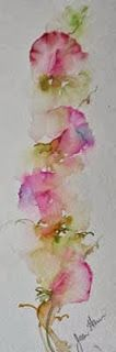 """Heaven Sent"" Sweet Pea  - Jean Haines  I ♥ Jean Haines sweet peas watercolours"