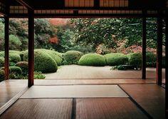 ⚜ Jardines y jardinería... zen garden