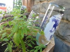 DIY Plant Watering Globes from wine bottles