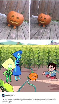 That little guy is the most adorable pumpkin ever.