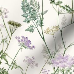 Queen Anne's Lace - Lilac - Spoonflower Room With Plants, Plant Rooms, Queen Annes Lace, Summer Garden, Blue Fabric, Custom Fabric, Spoonflower, Craft Projects, Custom Design