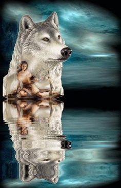 Native Woman and Wolf Reflection Art Native American Wolf, Native American Pictures, Native American Artwork, American Indian Art, American Indians, Wolf Images, Wolf Photos, Wolf Pictures, Indian Wolf