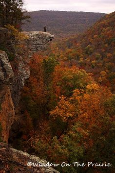 Hawksbill Crag in northwest Arkansas.