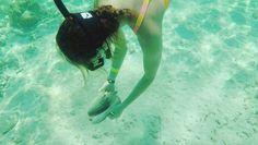 Akumal Cancun, Mexico Mexico Destinations, Travel Destinations, Cancun Mexico, Mexico Travel, Snorkeling, Palm Trees, Wander, Things To Do, Road Trip Destinations