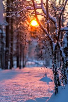 ★ mine is the night, with all her stars ★ – Winterbilder Winter Sunset, Winter Scenery, Winter Love, Winter Pictures, Nature Pictures, Beautiful Pictures, Holiday Pictures, Winter Photography, Nature Photography