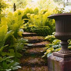 Nice Shade Garden...I can do this-need a smaller urn, shorter column and perhaps less formal, maybe concrete and cover in moss??