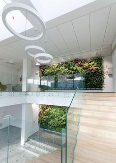 Pixel Garden je jedinečný modulárny zavlažovací systém, chránený patentom. Montáž kvitnúcich stien nevyžaduje žiadne špeciálne znalosti. Systém je možné inštalovať nielen v exteriéri, ale aj vo vnútri budov. Pixel Garden vám otvára predstavivosť na zostavenie vlastných motívov vertikálnych záhrad. #alvex #design #pixelgarden #greenwall #verticalgraden #interiordesign #flowers #plant #kvety #rastliny #glass #wood #natural #priroda Gardening, Plants, Lawn And Garden, Plant, Planets, Horticulture