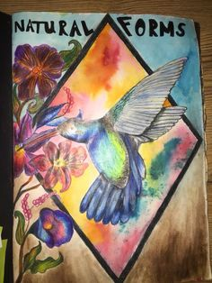 Natural forms title page humming bird and exotic flowers watercolour background Sketchbook Layout, Textiles Sketchbook, Gcse Art Sketchbook, Sketchbooks, Sketchbook Ideas, Natural Forms Gcse, Natural Form Art, Fantasy Art Women, Dark Fantasy Art