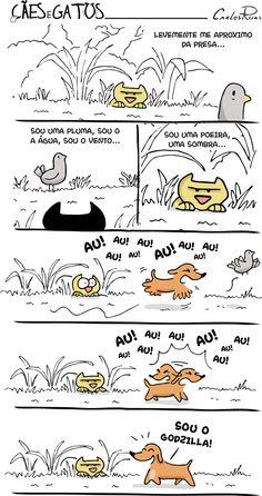 Cães e Gatos – Quem você é?