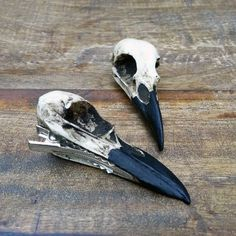 "Mini Raven Skull Hair Clip Christmas Gift (2.75"" Small) Resin Cast... ($26) ❤ liked on Polyvore featuring home, home decor, jewelry, goth home decor, handmade home decor, skull home accessories, gothic home decor and bird home decor"