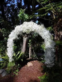 White Overtime Gypsophila - Babies Breath. Wedding ceremony arch - Simply Regal by Julie