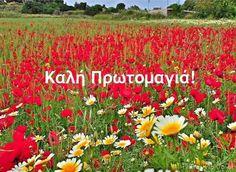 Καλή Πρωτομαγιά Mina, Greek Quotes, Flowers Nature, Make A Wish, Holidays And Events, Happy Day, Good Morning, Projects To Try, In This Moment