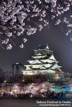 The beautiful Osaka Castle in the Sakura blossom season.