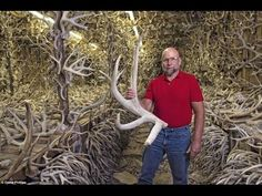 'Horn House' Showcases Massive Antler Collection - Articles - Coast to Coast AM