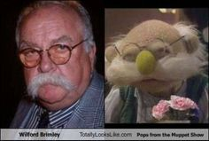 funny look alikes | Funny Pictures of Totally Look Alikes | Marysol's World