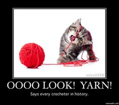 Yarn memes with cats.   Gotta love em'.