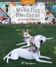 Halloween How to - DIY Dog Bandanas for Under $3 | Spoonflower Blog - Make your own dog Bandanas in a few easy steps with this easy tutorial.