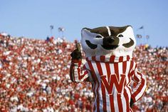 Bucky Badger has had some good times during this football season with wins over top-ranked Ohio State and then a one-point win over Iowa. And as with real badgers, he knows how to be tough when needed. Wisconsin Badgers Football, Ohio State Buckeyes, Buckeyes Football, Madison Wisconsin, University Of Wisconsin, Football Season, Bucky, College Football, True Love