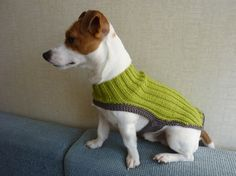 great dog sweater. $25.00 on etsy...