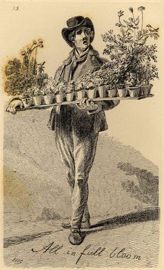 """Vagabondiana"" by John Thomas Smith (1817): ""Anatony Antonini, selling artificial silk flowers adorned with birds cast in wax."""