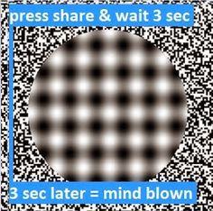 Image shared by Paul Dooley. Find images and videos about illusion on We Heart It - the app to get lost in what you love. Funny Texts, Funny Jokes, Hilarious, Funny Art, Stupid Funny, Trance, 4 Panel Life, Chain Messages, Vanellope Von Schweetz