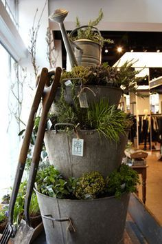 Galvanized Bucket Stacked Herb Garden. would be neat with succulents or christmas greenery.